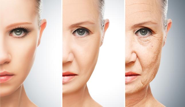 糖化と老化-糖質過剰摂取の影響-