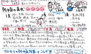 カトセイニュース7月号