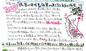 カトセイニュース10月号