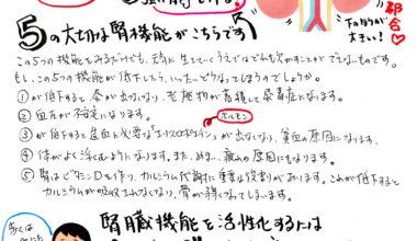 カトセイニュース12月号